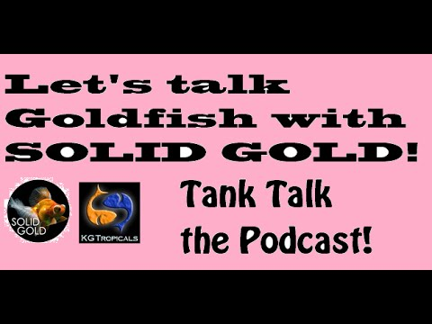 from Crew lets talk hook up podcast
