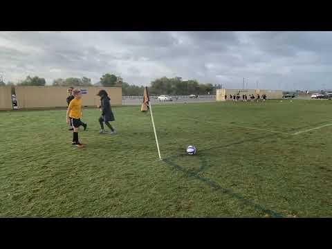Caribbean Premier League Team News