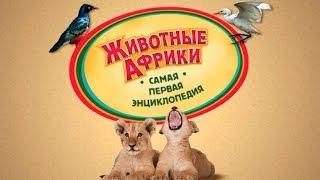 Хочу Знать ВСЕ! Животные Африки - Детская Энциклопедия ♥ Мультик Игра ♥ #хочузнать