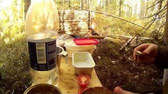 Riistalihapullat kermapippurikastikkeessa (Jalostaja)