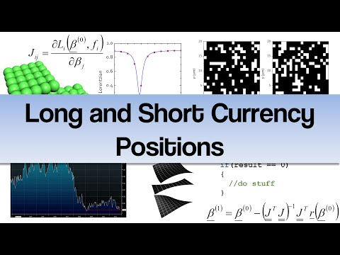 Long and Short Currency Positions