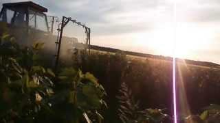 Oprysk porzeczki dolistnie & URSUS C360-Leśna City