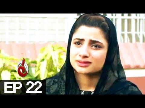 4 Din Ki Zindagi - Episode 22 - Aaj Entertainment