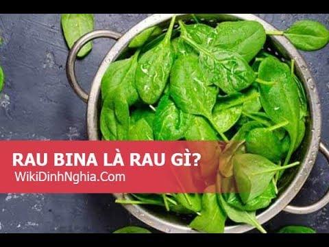 Rau bina là rau gì tiếng Anh là gì, có phải là cải bó xôi, rau chân vịt không