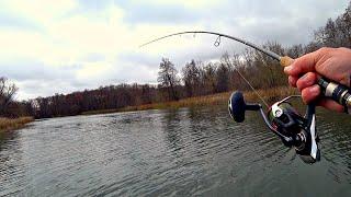 ЭТА ПРИМАНКА свела с ума всех щук! Жор щуки перед первым льдом! Рыбалка на спиннинг!