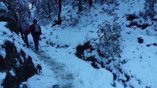snowfall  tb#poonhill