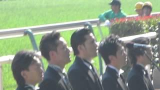 2014年6月1日東京競馬場にて、日本ダービー発走前に、 トキオの皆さんが...