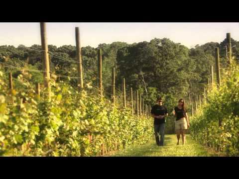 Reading Between the Vines - Natali Vineyards