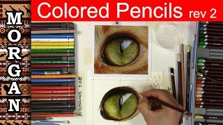 Colored Pencil Drawing : Eyes Jason Morgan wildlife art - how to draw