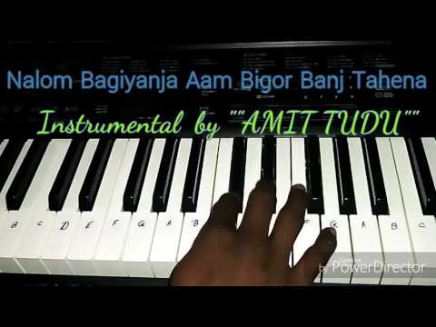 Nalom Bagiyanja Aam Begor Banj Tahena  santhali song instrumental by amit tudu    HD