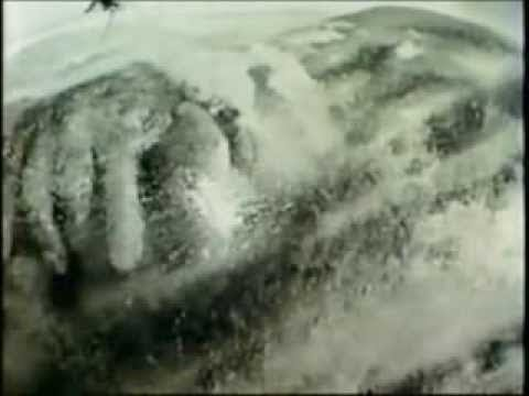 Bigfoot Shot by AirForce Capt in 1960