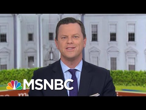 Willie Geist: This Entire Thing 'Is Insane' | Morning Joe | MSNBC