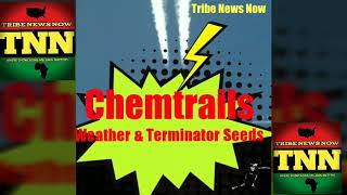 Tribe News Now: Chemtrails, Weather & Non-Fertile Seeds