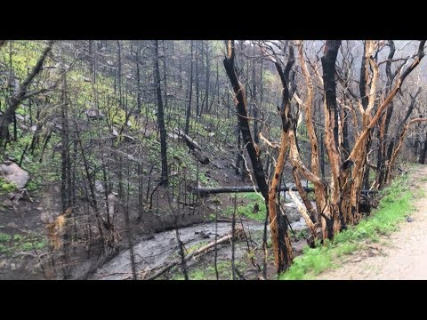 Colorado community braces for burn scar flooding