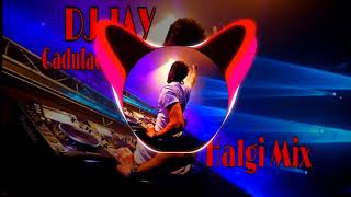 Gadulach Pani (Halgi Mix) DJ JAY THAKUR CHALISGAON
