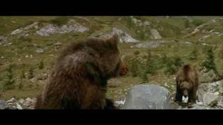 L'Ours (1988) - the cougar scene thumbnail