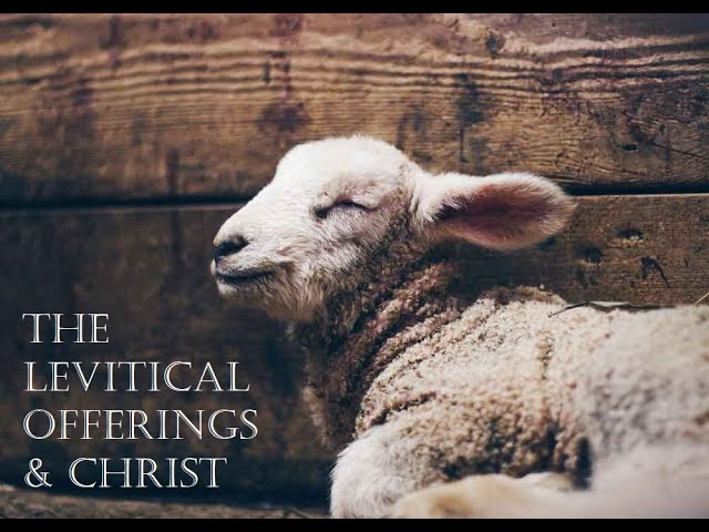 THE LEVITICAL OFFERINGS & CHRIST