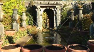 Nature: Arundel Castle and Gardens