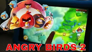 ANGRY BIRDS 2 Chuck Bomb Hal Corporal Pig Stella Piggy Island Foreman Pig Chef Pig and King Pig