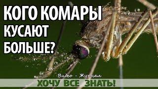 Почему комары кусают некоторых людей больше других!