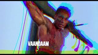 Vaandaam - Vaandaam ( polish trashcore / hatecore 2020 )