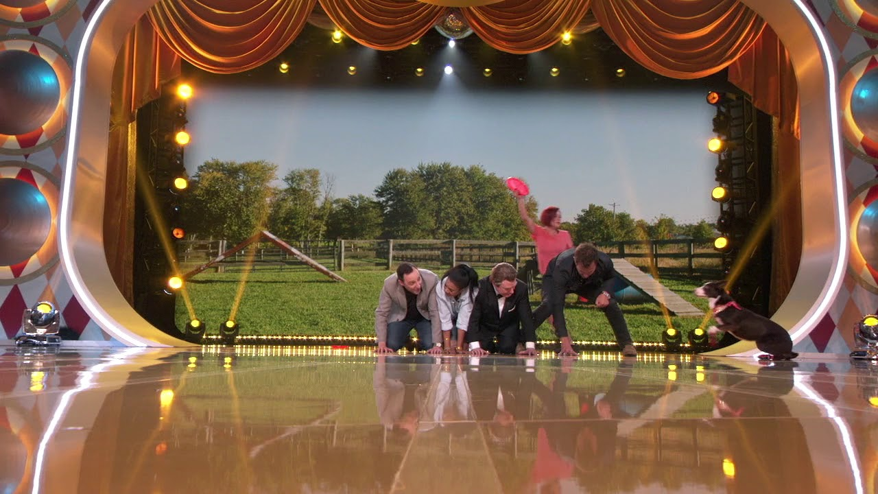 The Gong Show - Premieres Tonight 8|7c on ABC
