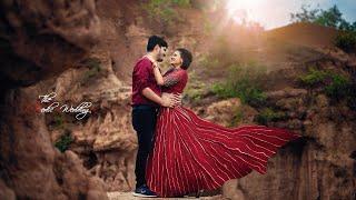 Gaurav & Sukriti    The Vedic Wedding    Cinematic Pre Wedding Teaser 2019