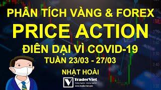 Phân Tích Vàng & Forex Theo Price Action - Điên Dại Vì COVID-19 - Tuần 23/03-27/03