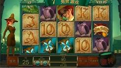 Miss Fortune bonus games - Playtech slot game