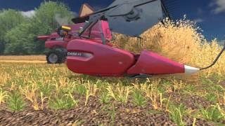 Wielkie żniwa ! Case Deut-Fahr Big Harvest !