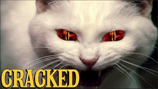 6 Scientific Findings That Prove Cats Are Evil
