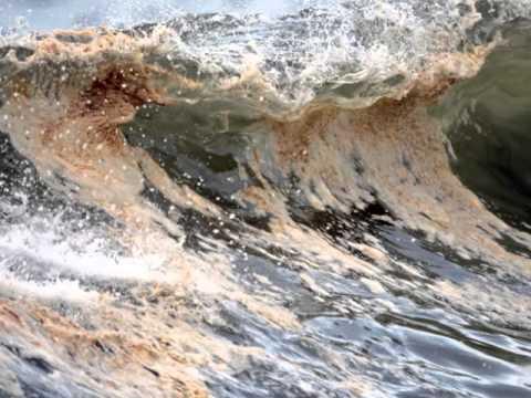 Oil Spill Slideshow