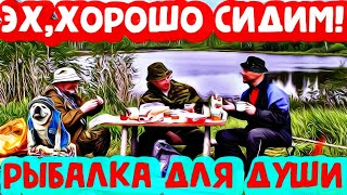 Необычные случаи на рыбалке 2021 Приколы на рыбалке Пьяные на рыбалке Неудачи на рыбалке Шок рыбалка