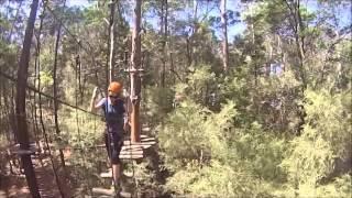 Tree Top Adventure Park - Central Coast
