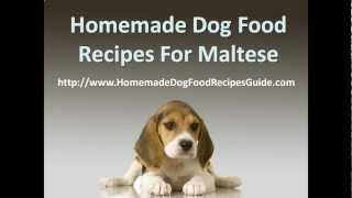 Homemade Dog Food Recipes For Maltese