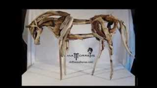 Driftwood horse, the making of... Matt Torrens