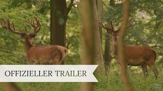 AUF DER JAGD - WEM GEHÖRT DIE NATUR | Trailer | Deutsch HD German
