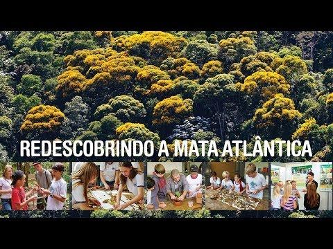 """DOCUMENTÁRIO - """"Redescobrindo A Mata Atlântica"""""""