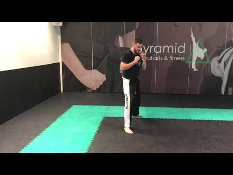White Belt - Turning Kick