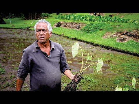 Nā Loea: The Masters   Ed Wendt: The Great Heart of Waiokāne