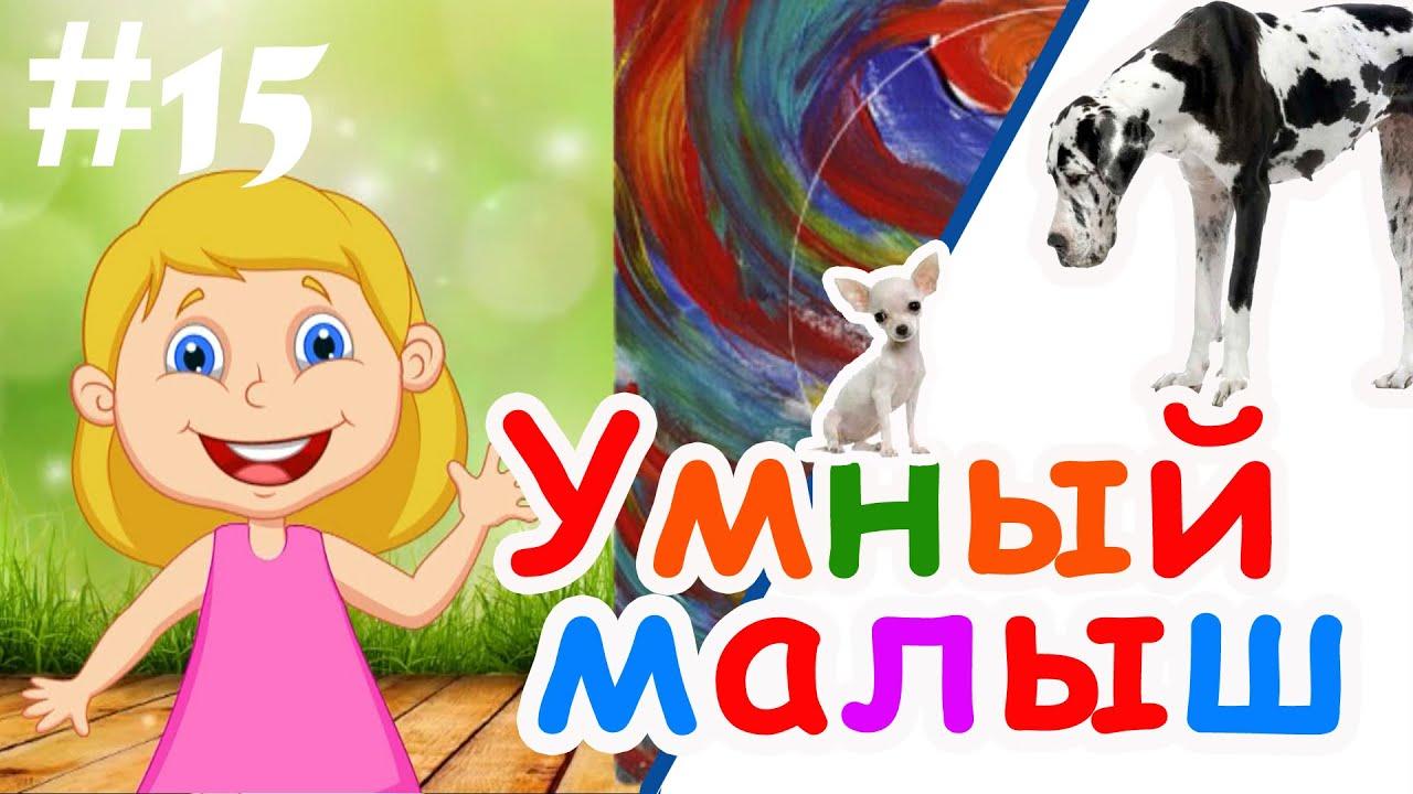 Умный малыш #15. Развивающий мультфильм для малышей / Smart baby #15. Наше_всё!
