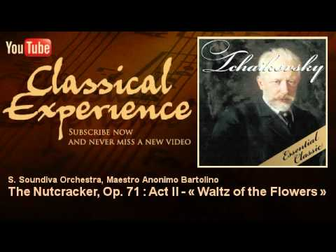 Pyotr Ilyich Tchaikovsky : The Nutcracker, Op. 71 : Act II - « Waltz of the Flowers »