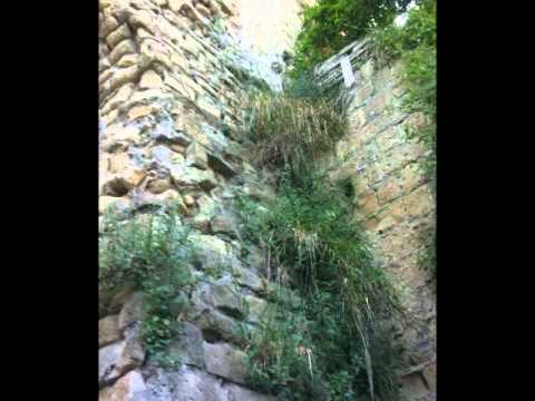 il giardino di babuk youtube