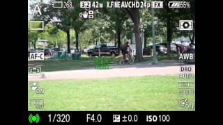 Understanding Focus Area on Sony Mirrorless Cameras