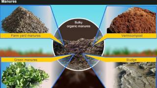 Introduction to Manures, Fertilisers and Soil Fertility Management [Year-3]