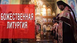 Божественная литургия  Литургия Иоанна Златоуста(, 2014-11-30T10:32:15.000Z)