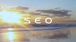 Daytona Beach Video Marketing