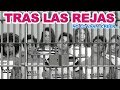 Download LEMONGRASS | NO LO VAN A CREER... MP3 song and Music Video