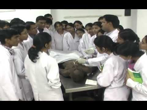 Students Through WEC Doing Experiment in JLN MEDICAL COLLEGE ANATOMY #WEC Hyderabad#MBBS Abroad from YouTube · Duration:  25 seconds