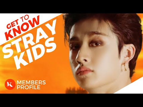 Stray Kids (스트레이 키즈) Members Profile & Facts (Birth Names, Positions etc..) [Get To Know K-Pop]